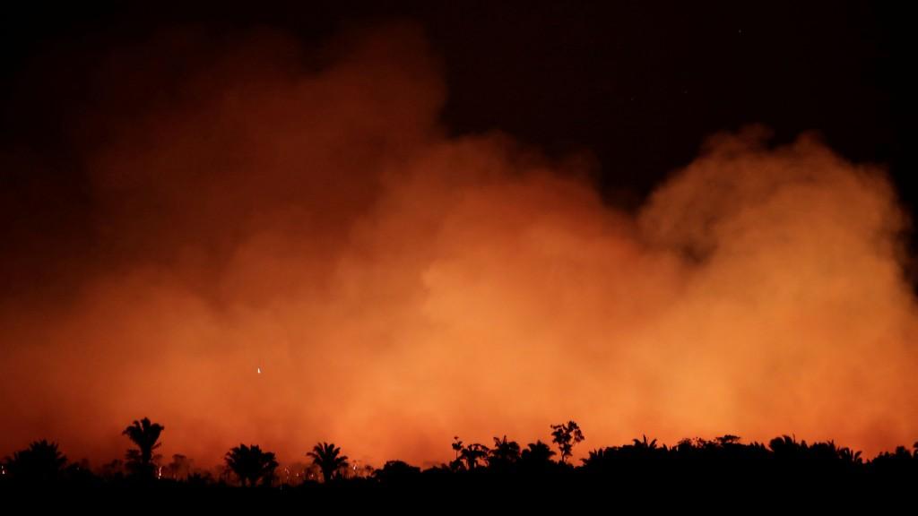 Incendios en el Amazonas: cuál es el estado de los focos hoy