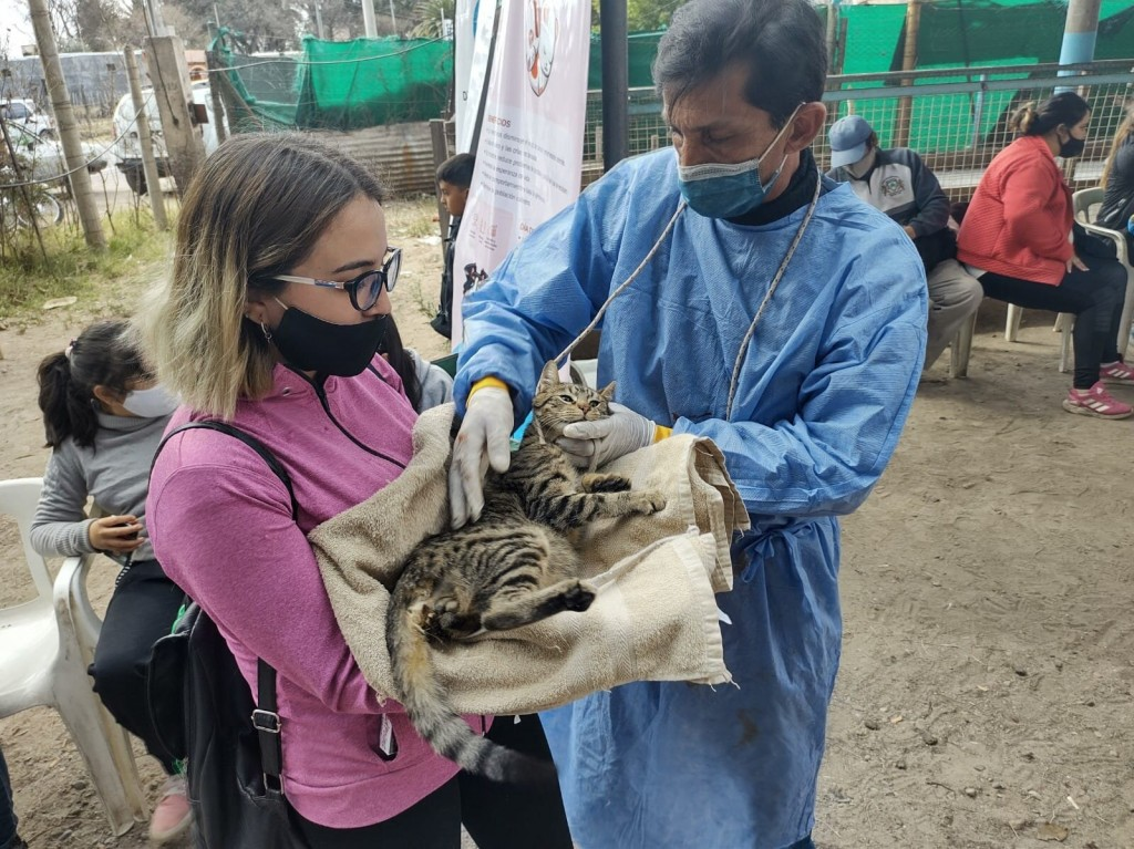 Más de un centenar de mascotas atendidas en Buen Orden